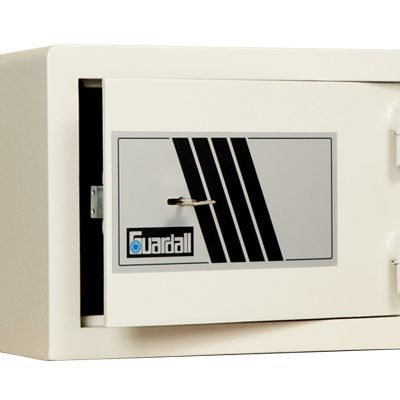 Guardall pistol safe; T60