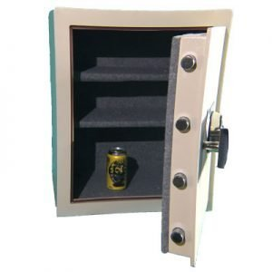 Secugard FP3C Home Safe
